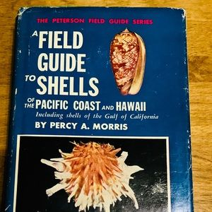 A Field Guide to Shells of the Atlantic and Gulf